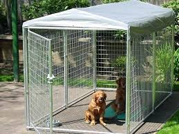 outdoor dog kennel with cover dog kennels with cover outdoor dog kennel roof