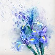 stock photo watercolor fl background beautiful irises
