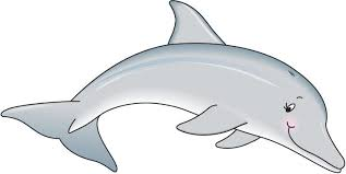 Image result for dolphin clipart free download