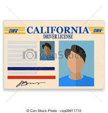 Plastic Background On Driver Card Isolated License White