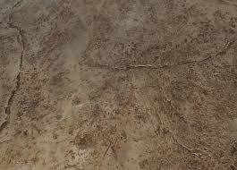 stained concrete floor texture. Contemporary Floor For Stained Concrete Floor Texture C
