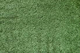 Models Green Carpet Texture R Intended Concept Ideas