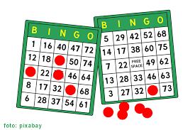 Afbeeldingsresultaat voor bingo