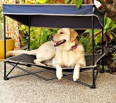 bravass lke diy outdoor dog bed pet