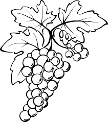 Small Picture Grapes from Spain Coloring Pages Color Luna