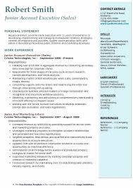 Cv Account Resume Format Of Accounts Executive Thrifdecorblog Com