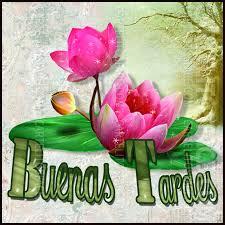Buenas Tardes Amig@s Images?q=tbn:ANd9GcTmN_DY90irYX1g8B1VvXm2zjQVlEBiMexfsLV9bd2UOaCiYYgx5A