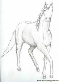 trotting horse drawing. Unique Trotting Horse Trotting Drawing Throughout R