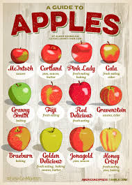 Types Of Apples Chart A Guide To Choosing The Best Apple For Pies Cider And More