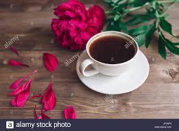 Guten Morgen Bilder Für Frauen Lustige Guten Morgen Bilder Für