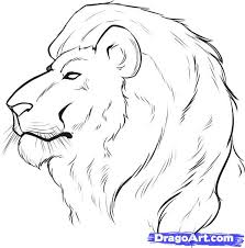 lion face drawing for kids. Fine Face How To Draw A Lion Face Step By Step Safari Animals Animals In Face Drawing For Kids E