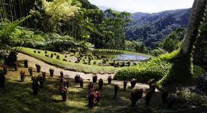 Image result for jardin de balata