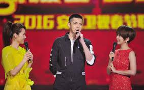 Image result for 2016猴年安徽卫视春晚