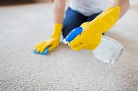8,107 Carpet cleaning service Stock Photos, Images   Download Carpet  cleaning service Pictures on Depositphotos®