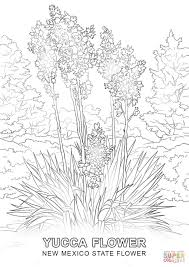 Small Picture New Mexico State Flower coloring page Free Printable Coloring Pages