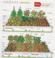 vegetable garden layout app garden