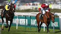 Image result for UK: The peoples horse Tiger Roll: