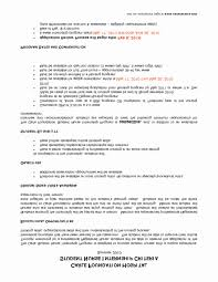 Resume Examples Without Bullet Points New Resume Bullet Points