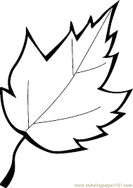 Small Picture Leaf Coloring Page 13 printable coloring page for kids and adults