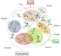 Venn Diagram Bioinformatics Intro Bioinformatics