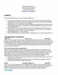 Retail Sales Associate Job Description For Resume Awesome Retail Sales Associate Resume Examples Sales Job Resume Best 40