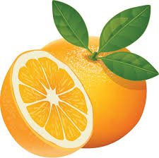 Image result for orange animation