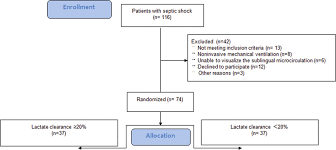 The Flowchart Of This Study On Septic Shock Patients