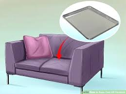 spray to keep dogs off couch interior design schools in cats furniture salary colleges