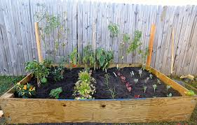 florida vegetable gardening. DIY Raised Bed Vegetable Garden With Recycle Wood And Wire Trellis Square Foot Plants In The Florida Gardening O