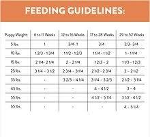 Dog Food Feeding Chart Nutro Ultra Puppy Dry Dog Food 30 Lb Bag Chewy Com