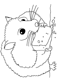 All pet hamster species are subject to free trade, and no documents are required for buying or selling or keeping. Print Coloring Image Momjunction Bear Coloring Pages Coloring Pages Coloring Pages To Print
