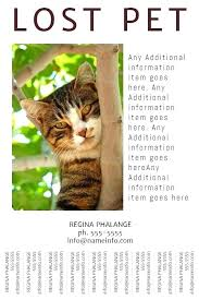 Flyer Templates With Tear Off Tabs Lost Cat Flyer Template Pet Missing Of Poster Free Word With