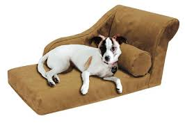 image of pet dog lounge chair for small dogs