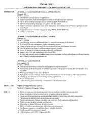 Junior Java Developer Resume Examples Software Engineer Resume Jr