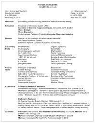 Good Resume Examples 2019 Achance2talkcom