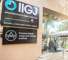 indian insute of gems and jewellery mumbai iigj an initiative of gjepc was elished under the aegis of ministry of merce industries in 2003