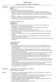 Tax Consultant Resume Samples Velvet Jobs
