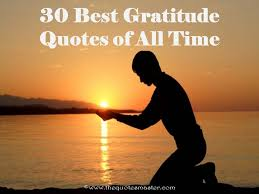 Quotes On Gratitude Magnificent 48 Best Gratitude Quotes Of All Time