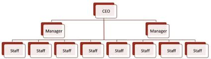 example of org the evolution of the org chart pingboard