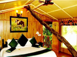 tree house jaipur. Tree House Jaipur Contact Number Best Of Resort Use Coupon Code Bestbuy Get