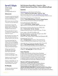 Igniteresumes Com Professional Resume Services