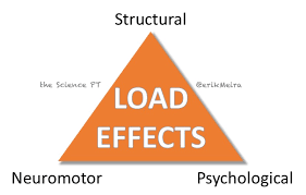just load it physio network loadeffects3