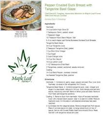 pepper crusted duck t with tangerine basil sauce recipe from maple leaf farms s stocks maple leaf farms whole ducks duck wings duck ts and