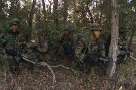 Light Infantry Tactics For Small Teams Infiltration Tactics Wikipedia