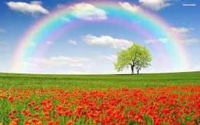 Rainbow Nature Hd Wallpaper Download ...