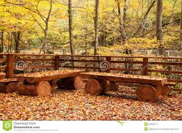 autumn leaves on wooden benches autumn furniture