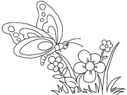 Bộ sưu tập 50 bức tranh tô màu con bướm đẹp nhất dành cho bé gái - Zicxa  books