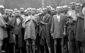 holocaust essay mr spindel nipmuc media center picture holocaust