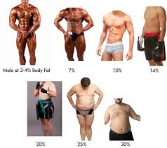 Men S Body Fat Chart Check Your Body Fat Percentage Online Body Fat Percentage