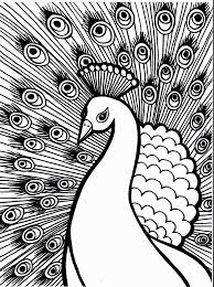 Peacock Coloring Page Animals Town Animal Color Sheets Peacock 14474
